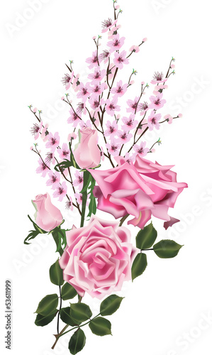 pink color cherry tree flowers and roses