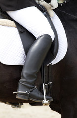 human leg on the horse