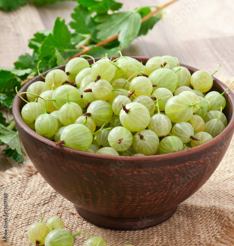 green gooseberries in a ceramic bowl