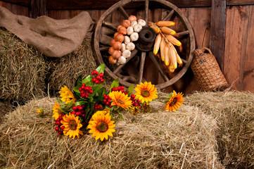 Interior of a rural farm - hay, wheel, garlic, onions, sunflower