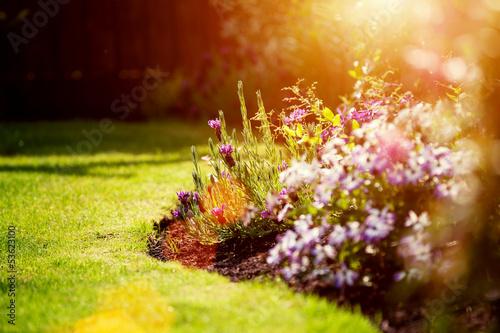 summer sunny garden