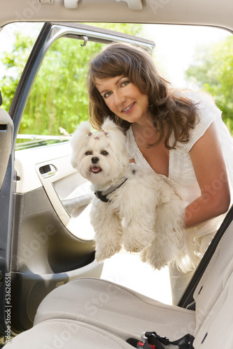 Getting dog into a car