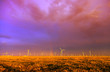 Wind farm at sunset after a storm