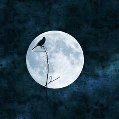 full moon collage