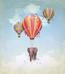 Elephant in the sky with balloons. Illustration