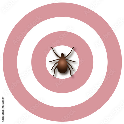 Lyme Disease, Tick, Bulls-eye Rash. EPS10