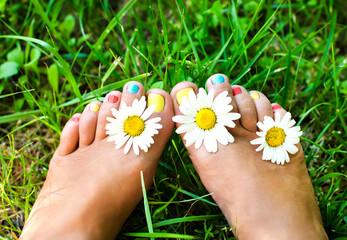 Female legs in daisies