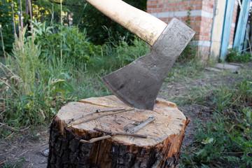 Axe in the tree stump