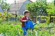 Cute little boy watering the vegetables