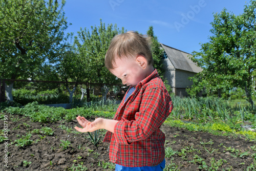 Curious little boy playing with an insect