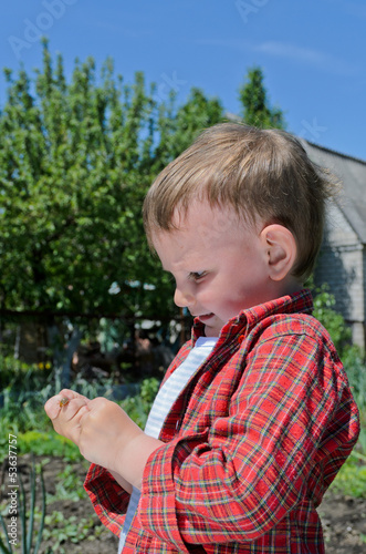 Little boy playing with an insect