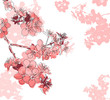 Retro floral background with a flower sakura