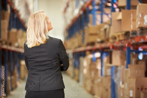 Rear View Of Female Manager In Warehouse