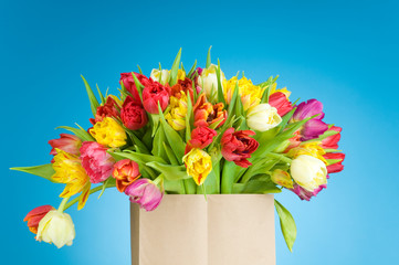 Tulips in the paper bag on blue background