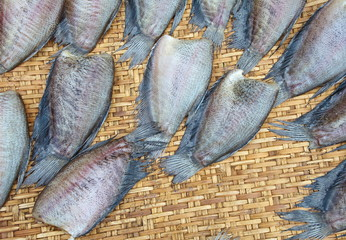 drying snakeskin gourami fishs in threshing basket