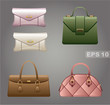 Female bags. vector, gradient, EPS10