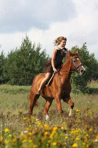 Beautiful teenage girl riding horse at the field