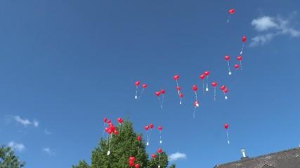 Hochzeitsgesellschaft mit Luftballons