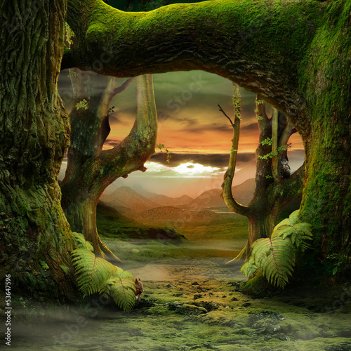 canvas print picture Green Paradise