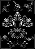 Collection white flourishes patterns   on a black background