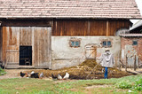 Rustic barn and yard with chickens and a scarecrow.