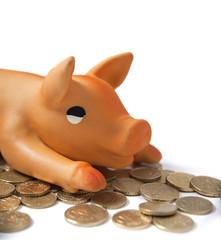 cochon tirelire et monnaies d'euro