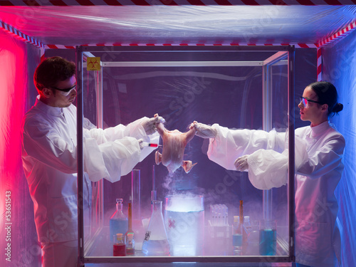 two scientists conducting chemical experiments on a raw chicken