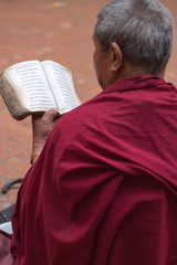 Monk reading in Nepal