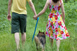 Young couple holding hands and walking with their dog