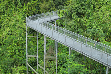 Steel Structure Of A Forest Canopy Walkway