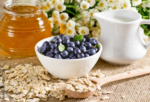 Blueberries  in the bowl, oatmeal, honey and milk jug