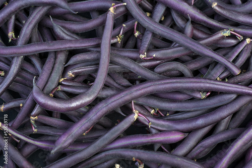 Purple Wax Snap Beans background