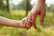 father's hand lead his child son in summer forest nature outdoor - 53662397