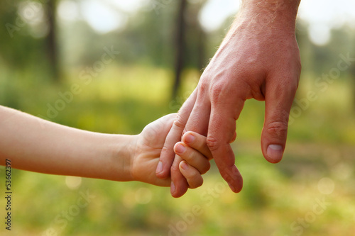 canvas print picture father's hand lead his child son in summer forest nature outdoor