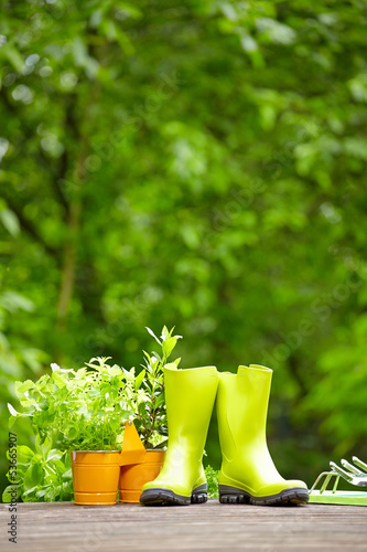 Fresh herbs in wooden box with garden tools on terrace