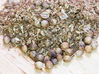 ground spicy coriander seeds