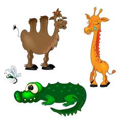 Giraffe Camel Crocodile and Fly