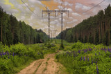 High voltage electric power lines