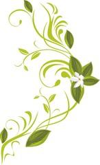 Blooming sprig