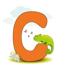 Alphabet, C Chamäleon