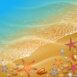 ocean shore and starfish, illustration