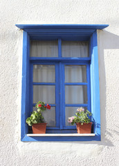 Window with flower pots