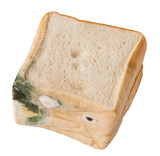 Moldy bread. Isolated