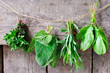 Mint, sage, tarragon and spinach on a wooden background