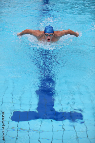 dynamic and fit swimmer  performing the butterfly stroke
