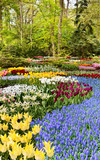 Park Keukenhof in the Netherlands
