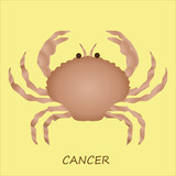Astrological symbol of crab or cancer
