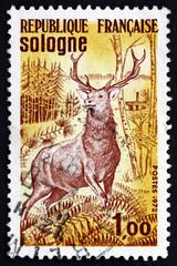 Postage stamp France 1972 Red Deer, Sologne Plateau
