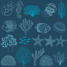 Życie podwodne elementy konstrukcji