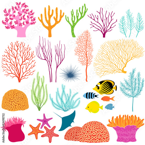 Underwater design elements - 53698752
